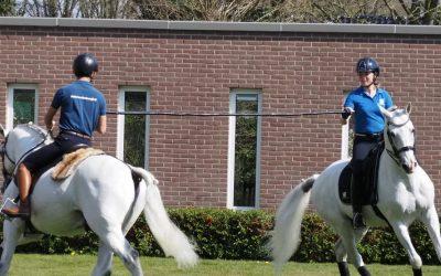 Paardenshow voor de deur